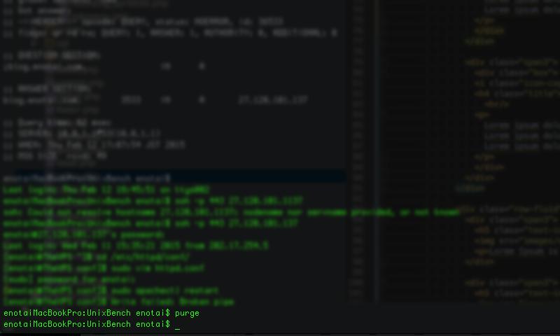terminal-command-purge