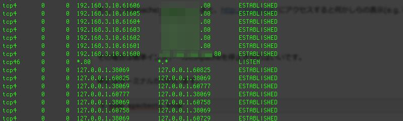 terminal-netstat-80